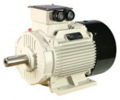 16 Induction Motor